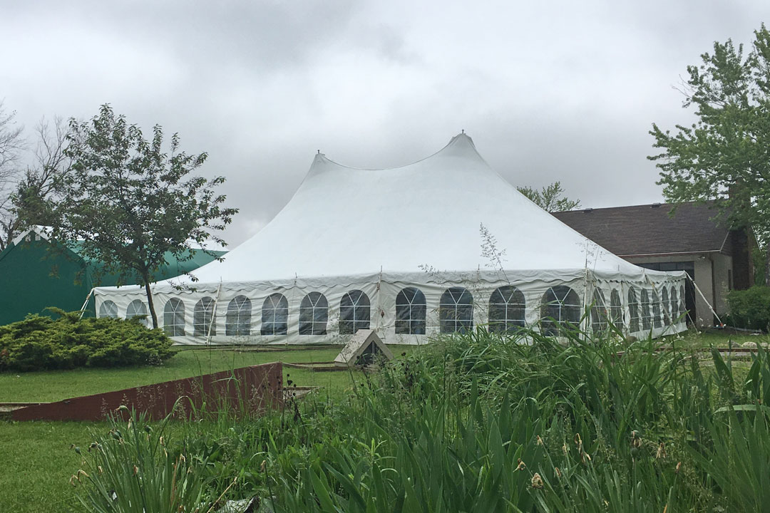 Festival - Tension Structure Tent Rental
